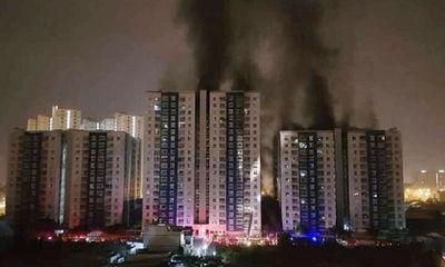 Vụ cháy chung cư Carina Plaza: 577 càng