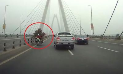 Video: Xe máy chở cây cảnh chạy ngược chiều trên cầu Nhật Tân