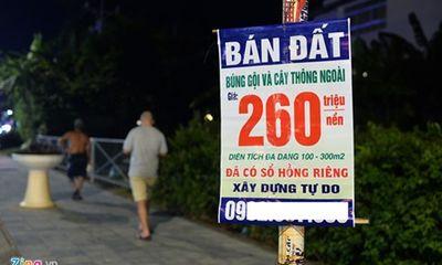 Đổ vỡ ở Hà Nội, Sài Gòn là bài học khi đầu cơ đất Phú Quốc, Vân Đồn