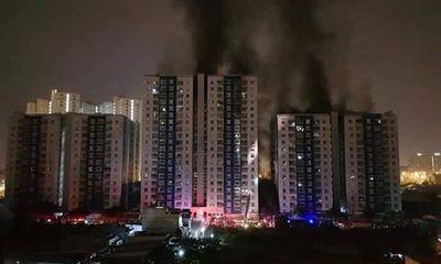 Vụ cháy chung cư Carina Plaza 13 người chết: Bắt lãnh đạo chủ đầu tư