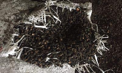 Vụ trộn phế phẩm cà phê vào tiêu: Hiệp hội Hồ tiêu lên tiếng