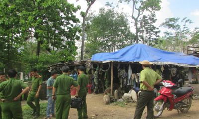 Những vụ án phá rừng rúng động Tây Nguyên trước khi trùm lâm tặc Phượng