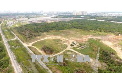 Một Tổng Giám đốc bị tạm đình chỉ vì chuyển nhượng đất sai thẩm quyền cho Công ty Quốc Cường Gia Lai