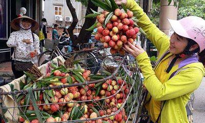 Thực hư thông tin vải thiều Bắc Giang 3.000 đồng/kg, nông dân phải đổ xuống sông