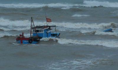 Tàu cá chìm, 31 ngư dân Quảng Ngãi trôi dạt ở Trường Sa