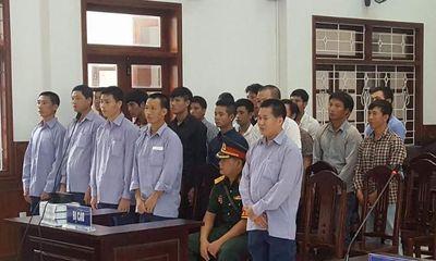 Vụ phá rừng pơmu ở Quảng Nam: Nguyên Đồn phó biên phòng lãnh 4 năm tù