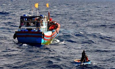 Cứu vớt thành công 5 ngư dân bị tàu