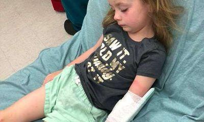 Đau lòng cô bé 5 tuổi bị liệt tạm thời vì bọ ve cắn vào đầu
