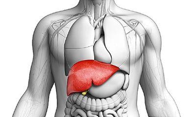 Tăng men gan: Cẩn trọng những căn bệnh này đang