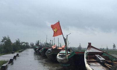 Nhiều tỉnh hoãn họp, cấm biển, kêu gọi tàu thuyền vào bờ trước giờ bão Sơn Tinh đổ bộ