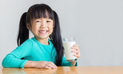 Tư vấn tiêu dùng - Chọn sữa tươi chuẩn của Hà Lan
