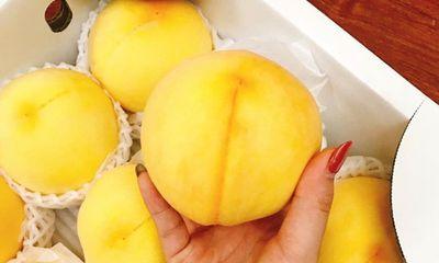 Đào vàng Nhật Bản giá cả triệu đồng/kg vẫn hút khách mùa vu lan