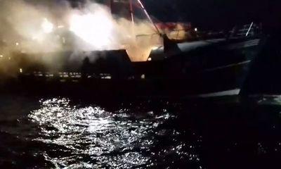 Ngư dân Pháp và Anh hỗn chiến vì tranh giành sò điệp