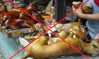 Hà Nội muốn người dân từ bỏ thói quen ăn thịt chó, mèo