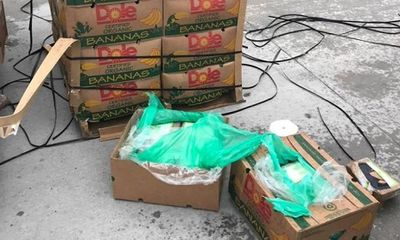 Mỹ điều tra số cocain trị giá 18 triệu USD: 'Cuộc sống mang lại cho bạn những quả... chuối'