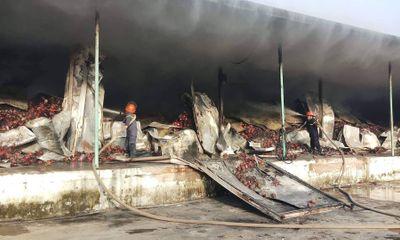 Hỏa hoạn thiêu rụi kho chứa 260 tấn thanh long ở Bình Thuận
