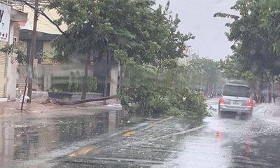 Bão số 9 suy yếu thành áp thấp nhiệt đới, mưa lớn tại Sài Gòn