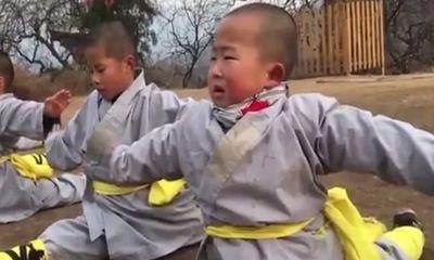 """Phát """"sốt"""" với màn múa võ ở Thiếu Lâm Tự của tiểu hòa thượng 3 tuổi"""