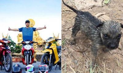 """Video: Phượt thủ Việt """"hồi sinh"""" chú chó nhỏ ngạt nước gây"""