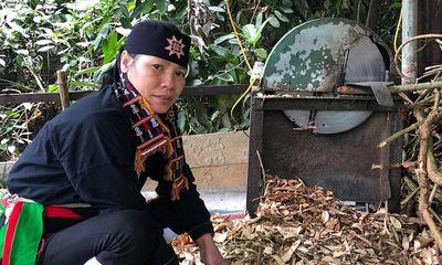 """Hé lộ """"phương pháp luận trị"""" chữa bệnh xương khớp giúp người Việt thoát bại liệt"""
