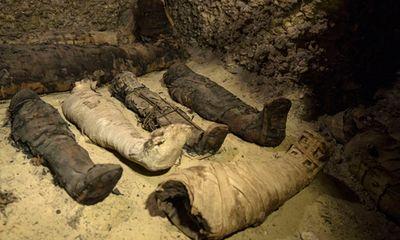 Phát hiện lăng mộ 2.000 năm chứa 50 xác ướp ở Ai Cập đặt trong 4 hầm chứa
