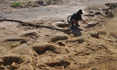 Phát hiện dấu chân khủng long khổng lồ từ 95 triệu năm trước