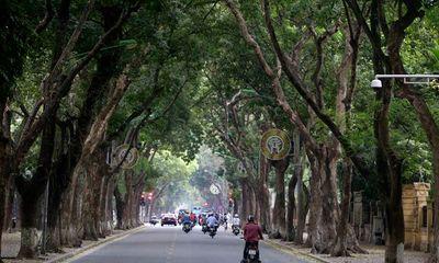 Nhiều tuyến phố Hà Nội vắng hoe, yên ả trong ngày giỗ Tổ Hùng Vương