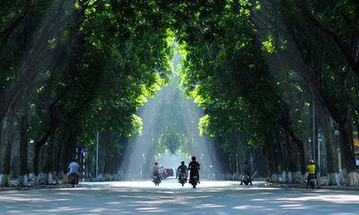 Một số giải pháp cải thiện môi trường trên địa bàn thành phố Hà Nội