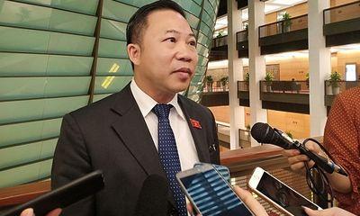 ĐBQH Lưu Bình Nhưỡng nhận định việc ông chủ Nhật Cường Mobile bỏ trốn: