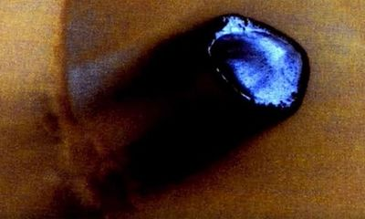 Rộ tin Google Mars làm lộ hình ảnh UFO của người ngoài hành tinh trên sao Hoả