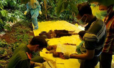 Vụ 3 bà cháu bị sát hại, phi tang xác ở Lâm Đồng: Lạnh người vì lời khai của nữ hàng xóm ác độc