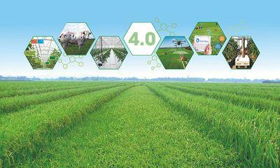 Geofarmer hệ thống giám sát và phản hồi trong các dự án phát triển nông nghiệp (Kỳ I)