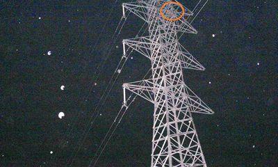 Nghệ An: Xuyên đêm giải cứu người đàn ông leo lên cột điện cao thế vì mâu thuẫn gia đình
