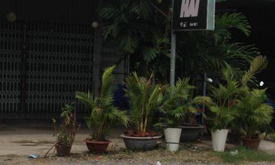 Cảnh sát đột kích phòng ngủ trong quán cà phê, lộ bí mật gây