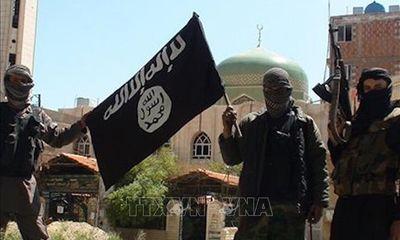 Công nhân điện nghiên cứu phương pháp phát hiện tên lửa cho IS lĩnh 6 năm tù