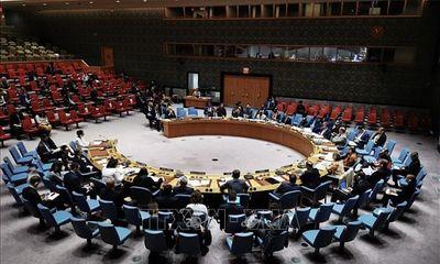 Việt Nam sẵn sàng đảm đương trọng trách tại Hội đồng Bảo an Liên hợp quốc