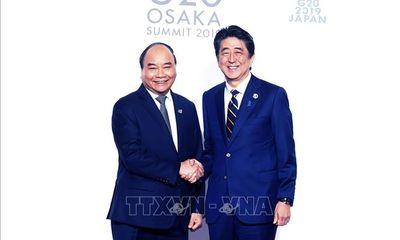 Thủ tướng Nguyễn Xuân Phúc: Việt Nam sẵn sàng hợp tác với các nước G20
