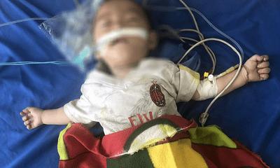 Lào Cai: Bé trai 12 tháng tuổi nguy kịch vì ngộ độc thuốc phiện do bà nội tin lời thầy lang