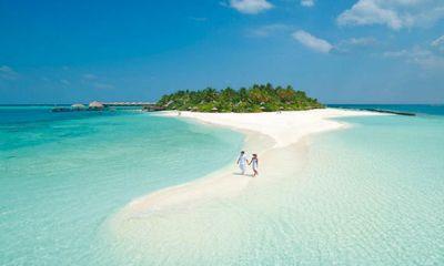 Video: Chất thải của loài cá kỳ lạ hình thành nên những hòn đảo ở thiên đường Maldives