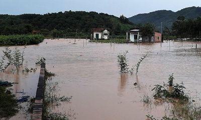 Mưa lớn kéo dài 6 tiếng, hàng trăm ngôi nhà ở Lâm Đồng chìm trong biển nước