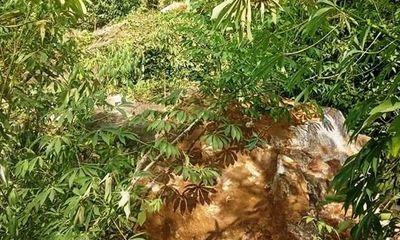 Yên Bái: Sạt lở đất khiến 4 người dân đi bóc quế thương vong