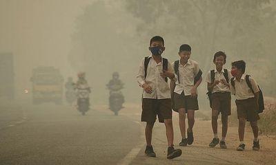 Bệnh nhân tâm thần gia tăng tại khu vực ô nhiễm không khí