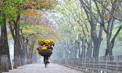 Tin tức dự báo thời tiết mới nhất hôm nay 28/9/2019: Hà Nội không mưa, nắng hanh