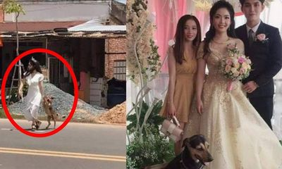 Chú rể tá hỏa khi cô dâu lao ra đường mời