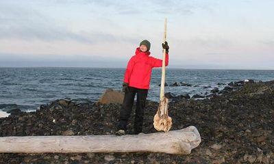 """Nga: Phát hiện hộp sọ hiếm có của """"kỳ lân Bắc Cực"""""""