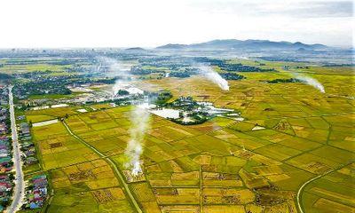 Thực trạng phát triển HTX nông nghiệp ở vùng đồng bằng sông Hồng