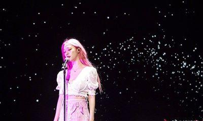 Sulli: Bông hoa lê tuyết xinh đẹp bị vùi dập trong gió bão cuộc đời
