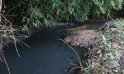 Thủ tướng giao bộ Công an điều tra vụ nguồn nước sông Đà bị ô nhiễm