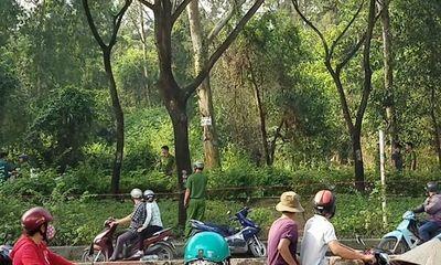 TP. HCM: Đi hái rau dại, tá hỏa phát hiện người đàn ông tử vong trong tư thế treo cổ giữa rừng ươm