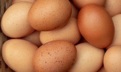 Tin tức đời sống mới nhất ngày 7/11/2019: Cố ăn 50 quả trứng gà, người đàn ông chết tức tưởi